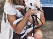 avis compagnie Goldenway Pets pour voyage chien vers l'Australie