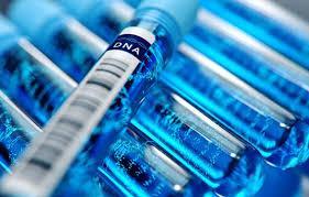 Les tests ADN en ligne sont-ils fiables et légaux ?