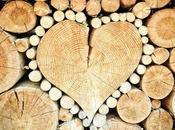 Découvrez bois sous toutes formes