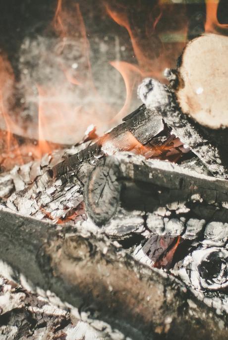 cendres de bois pour le jardin engrais et fait fuir les escargot et limaces de vos plantes - clematc