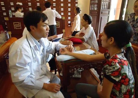 Histoire de la phytothérapie vietnamienne
