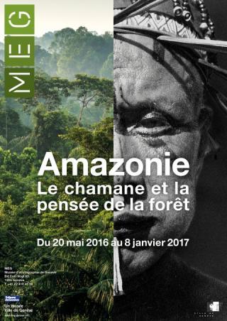 Amazonie%20le%20chamane%20et%20la%20pensée%20de%20la%20forêt