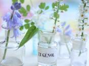 Flowers Alchemy