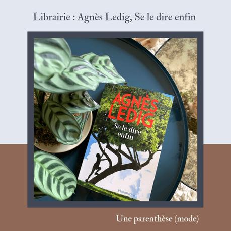 Librairie : Agnès Ledig, Se le dire enfin