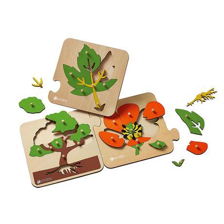 Puzzles botanique