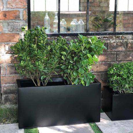 bac jardinière extérieur plante - blog déco - clematc