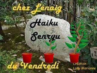 Haïkus 129  : rendez-vous au jardin pour prendre l'air