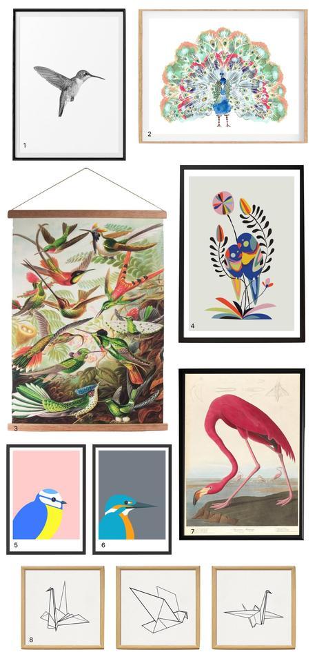 Affiche dessin oiseaux vintage retro aquarelle paon pie corbeau flamant rose origami