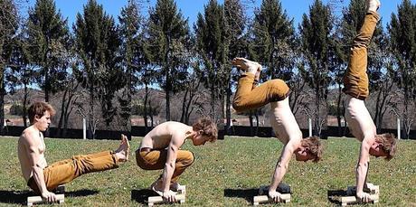 handstand parallettes