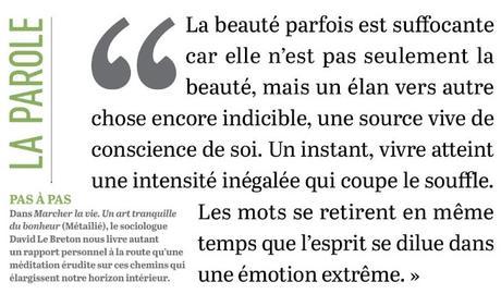 Percevoir la beauté...