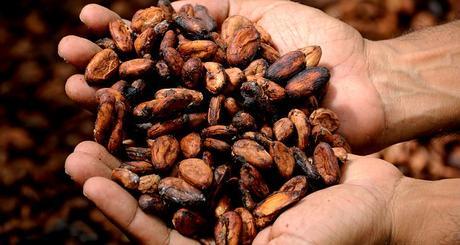 Mains, De Cacao, Cacao, Délicieux