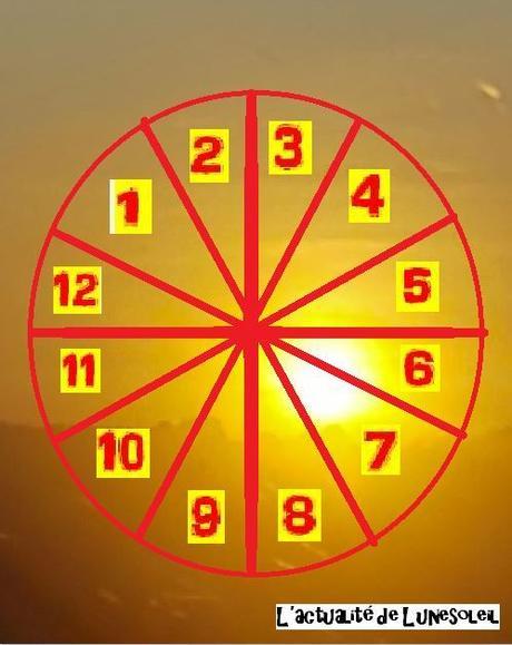 Sondages sur les 12 maisons en astrologie