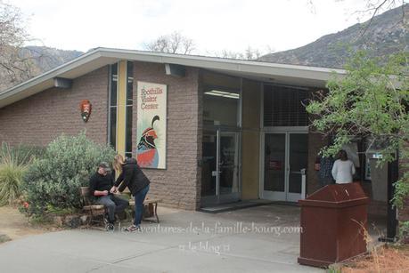 Visiter le Sequoia National Park en hiver