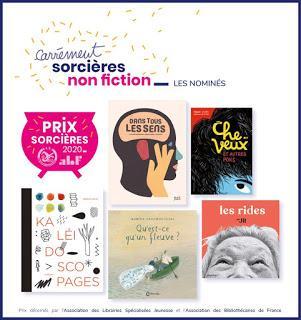 Les six lauréats des prix Sorcières 2020