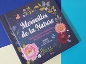 Merveilles Nature Découvre monde fabuleux fleurs pop-up Yoojin Kathryn Selbert