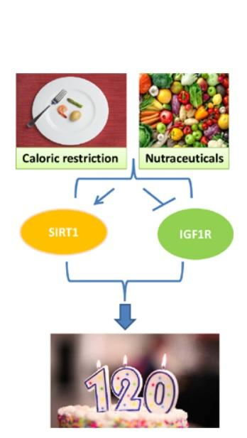 Visuel Current Nutraceuticals June, 2020 DOI : 10.2174/2665978601666200213121512