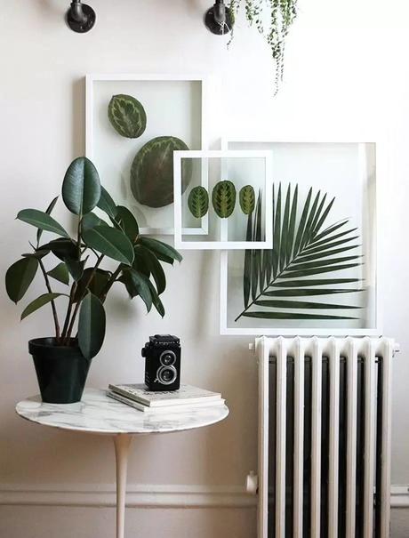 déco intérieure herbier cadre blanc plante verte table de salon ronde en marbre cadeau fille ado clematc