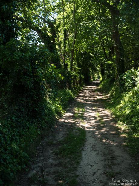 même déconfiné, l'expérimental continue #Bretagne #Finistère