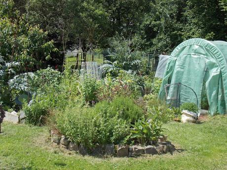 Le pH du sol est important pour la pousse de vos légumes