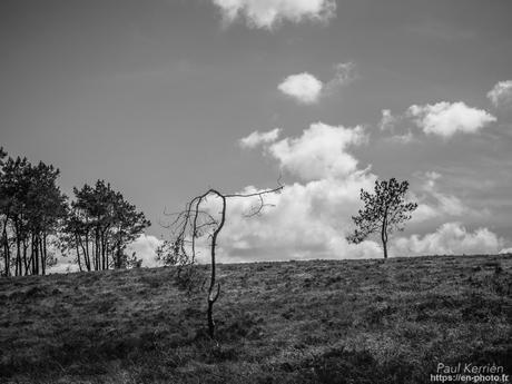 au Menez-Hom #montagne #Bretagne #Finistère
