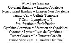 #Cell #protéinemédicament #iaisoncovalente Développement de Protéines Médicament à Liaison Covalente par Thérapeutique Réactive par Proximité Spatiale