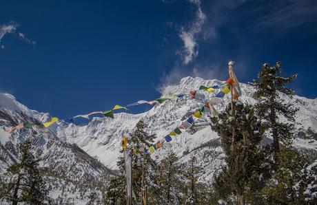 TREK AU NEPAL (suite) : Le Tour des Annapurna (sous la neige) de Vincent