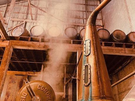 Info bière – 700 tonneaux de bière artisanale pandémique transformés en whisky à Victoria, avec des résultats surprenants pour les distillateurs  – Malt