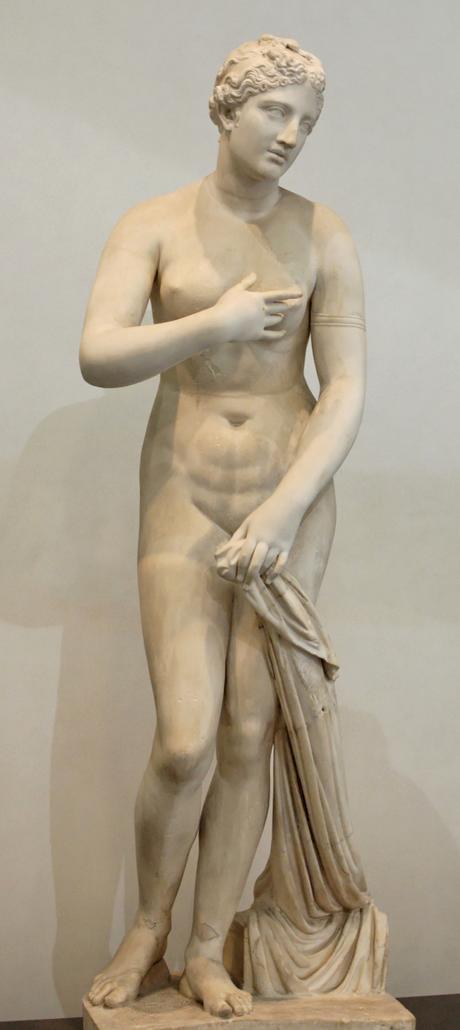 Vénus : la féminine céleste