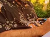 #2020RacontePasTaVie jour 219, chemises hawaïennes
