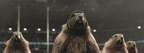 Marmottes de l'été 2020 (c) France 3