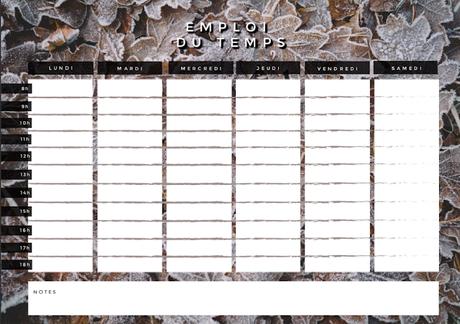 ✎ Emploi du temps #7  Une version pour l'Automne, l'Hiver & le Printemps