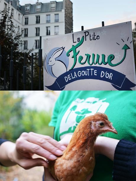 Ferme du Jardin d'Eole à Paris
