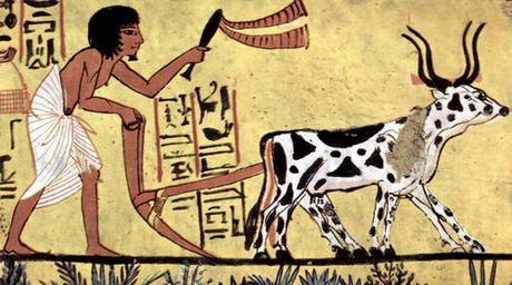 Agriculture egyptienne antique