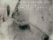 "Expo ""Polymorphées"" chez Alès octobre 2020"