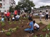 Stains (93) Création d'un jardin permaculture coeur banlieues
