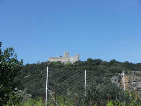 La France - Chateau de Tornac - dans le Gard