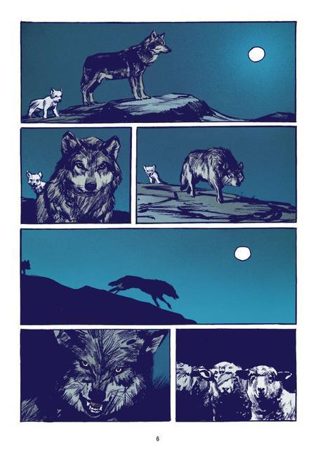 Le loup de ROCHETTE