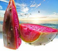 La figue de Barbarie: bienfaits & produits de santé, beauté