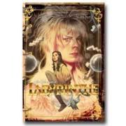 Le Livre de Sandy : Labyrinth