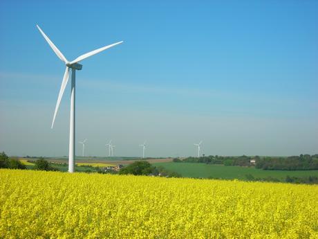 Les éoliennes ne causent pas un trouble anormal du voisinage !