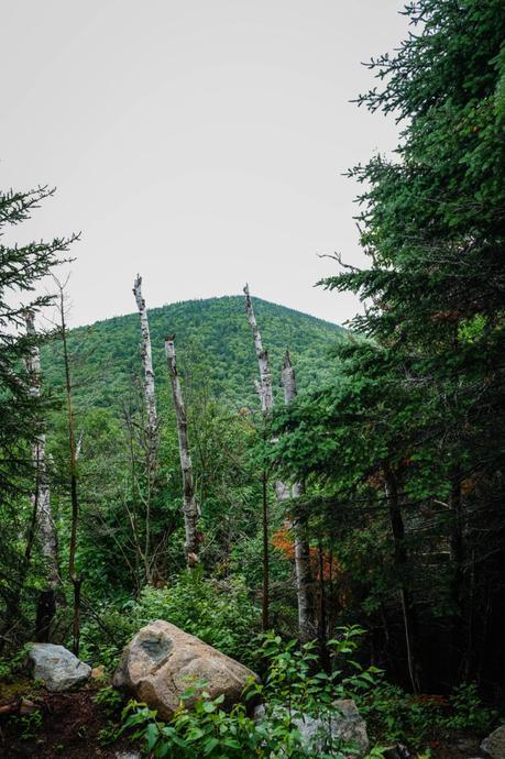 parc mont Mégantic