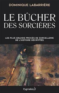 Le Bûcher des sorcières de Dominique Labarrière