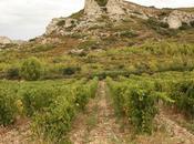 Dame Baux-de-Provence