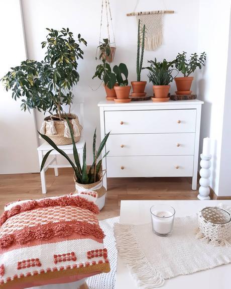 Laura Dekor commode collection plante verte intérieur cactus