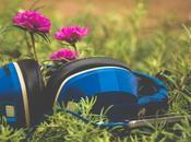 musique plantes, étrange découverte