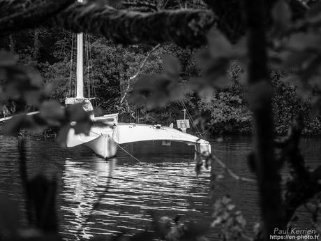 octobre, le mois du chou romanesco #Bretagne #Finistère