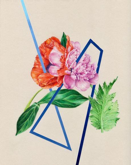 Les illustrations poétiques de Jessica Tenbusch