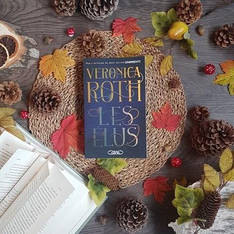 Les Élus, tome 1 - Veronica Roth