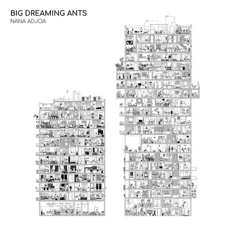 Nana Adjoa ' Big Dreaming Ants