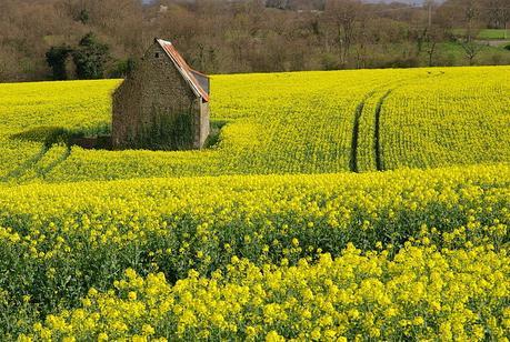 Agriculteur ou bailleur de location touristique ?